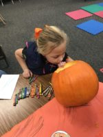 Girl looking inside a carved pumpkin.